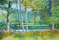 Birches in Summer