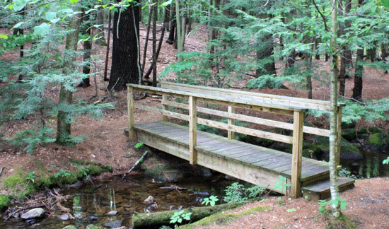 One of several footbridges in the John Hay Forest