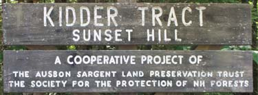 The Kidder Tract on Sunset Hill