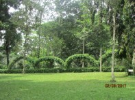 Aburi Botanical Gardens Ghana Feb 2017 Lake Arbor Travel-11