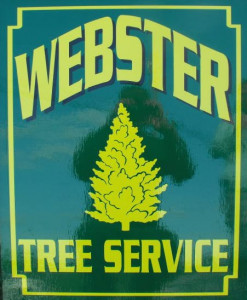 Webster Tree Service