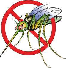 Mosquito.west.nile