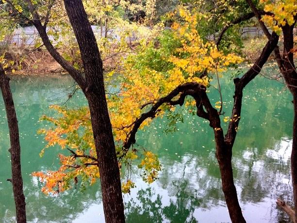 Lady Bird Lake 4