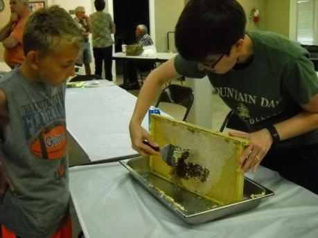 Ray Tucker's daughter, Rebecca, uses a capping scratcher to make sure that all the honey cells are uncapped