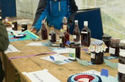 Competition time at Damson Day 2015