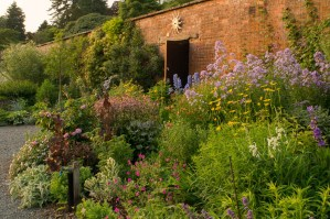 The Walled Garden in the evening sun