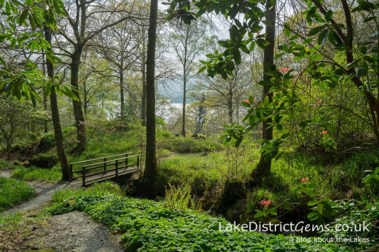 Stagshaw Gardens looking towards the lake