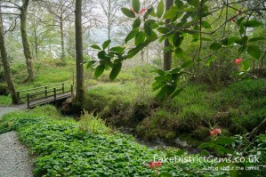 Stagshaw Gardens, Waterhead near Ambleside