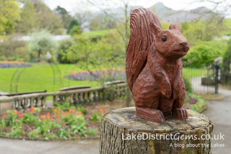 Squirrel carving in Hope Park