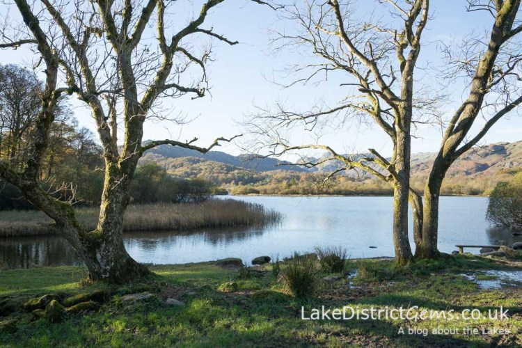 The view over Elterwater
