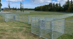 Cold Lake dog owners can enjoy new park