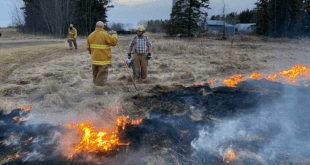 Partial Fire Ban implemented in the County of Vermilion River