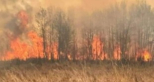 Cold Lake RCMP advise of Hwy 28 diversion due to grass fire