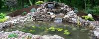 Creating man made pond | Jenson Lake Mower | Aquatic Weed ...