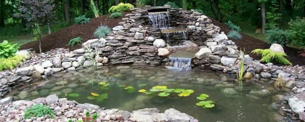 creating man pond jenson