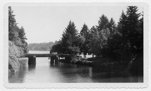 NH-1925ForestHills