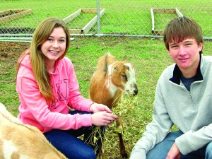 Savannah Musser and Spencer Brass help care for the goats behind Wesley Chapel High School as part of the school's agricultural program. (Photo by B.C. Manion)