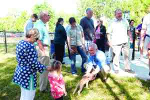 Tampa mayor Bob Buckhorn shook hands and gave dogs a friendly scratch or two at the opening of the Rotary Club of New Tampa Dog Park on May 2. (Courtesy of Bob Thompson)