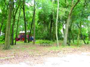 A jungle gym, picnic table and swing set go unused at Hercules Park, which was closed by Pasco County four years ago for lack of funding.