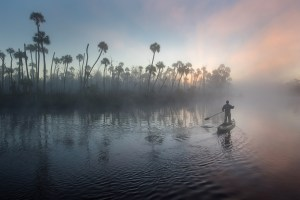 Early on the 10th day of the expedition, Carlton Ward Jr., set up his camera on shore and paddled along the Chassahowitzka River.