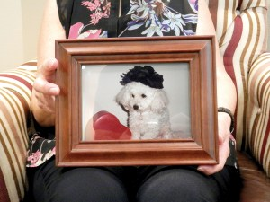 Mary Ann Polom attended a recent pet loss support group meeting to share her feelings after losing Annie, her toy poodle. Michael Murillo/Staff Photo