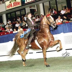Before Sarah Russell owned her own stables, she was a successful saddleseat competitor. At age 17, she was already a three-time world champion. (Courtesy of Sarah Russell)