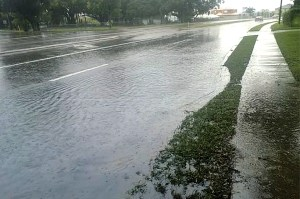 Stormwater issues, including flooding, have affected the intersection of West Bearss Avenue and Lake Magdalene Boulevard.