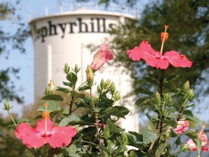 The landmark Zephyrhills' water tower looms just behind Florida Hospital Zephyrhills' CREATION Health Community Garden. Garden beds, aquaponics, butterfly gardens and an educational pavilion will make up the 2-acre garden. (Fred Bellet/Photos)