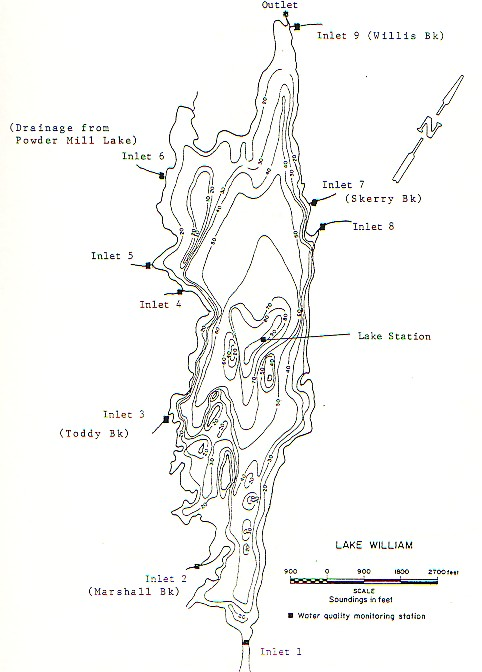 Lake William, Waverley