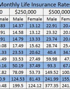 Afforable life insurance rates chart lakeside agency also affordable michigan rh lakesideinsurance