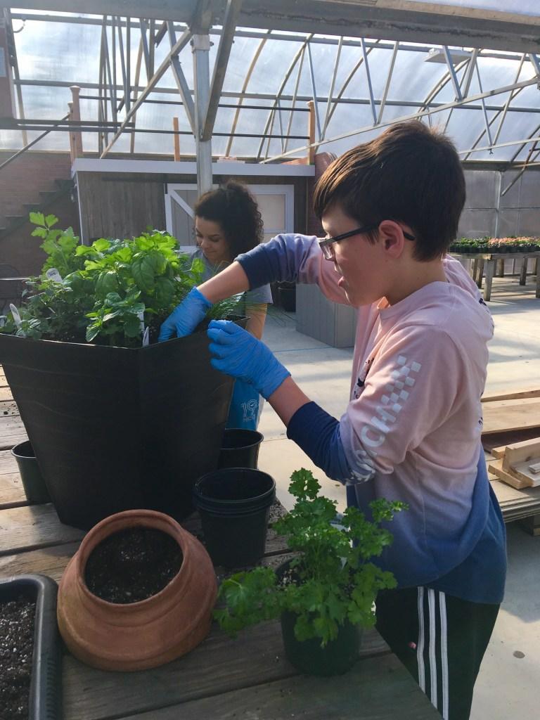 students planting pots