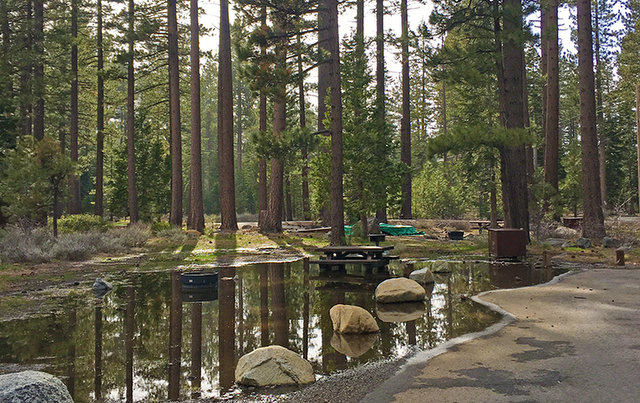 Update on Forest Service Campground Opening Dates in Lake Tahoe Area