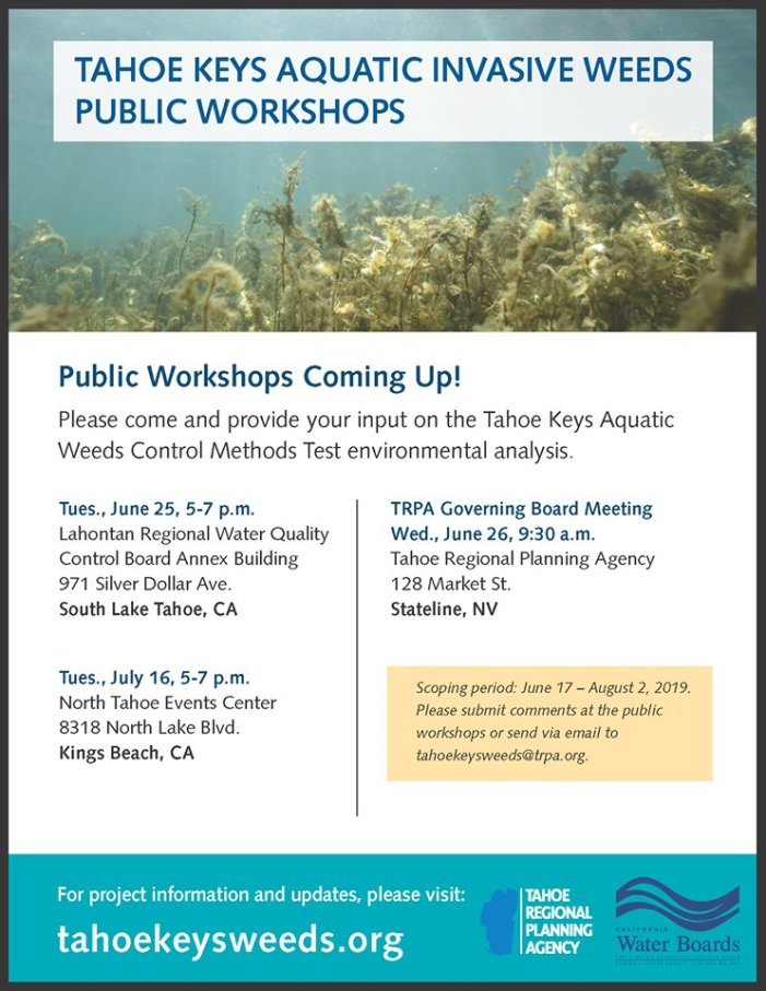 Aquatic Week Public Workshops Coming Up