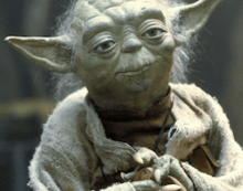 A Bit of Wisdom from Yoda on May the 4th