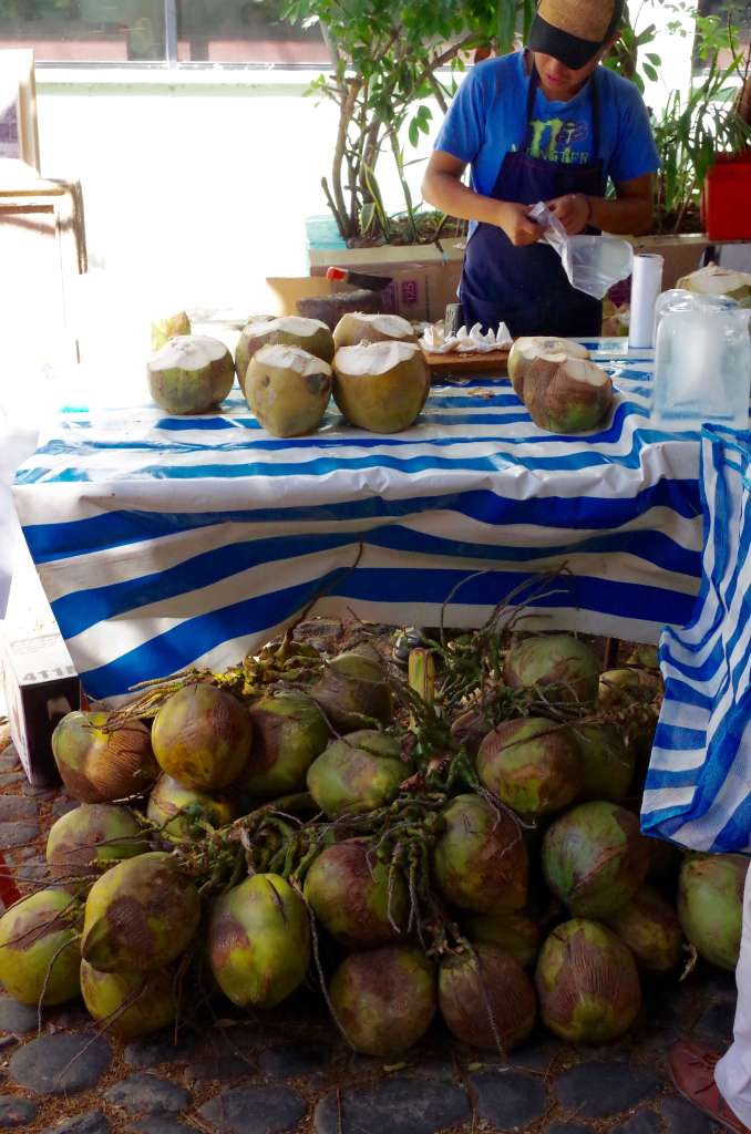 coconuts in Ajijic tianguis