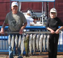 trout - salmon - walleye picture