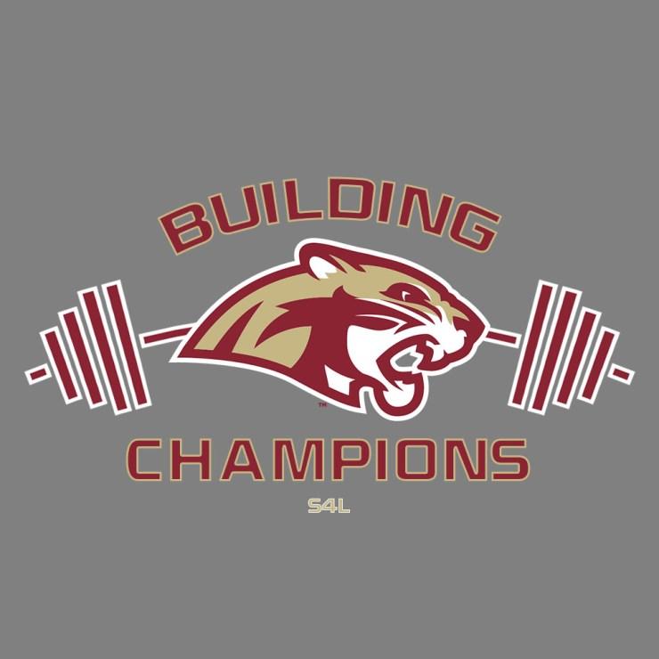 building_champs2