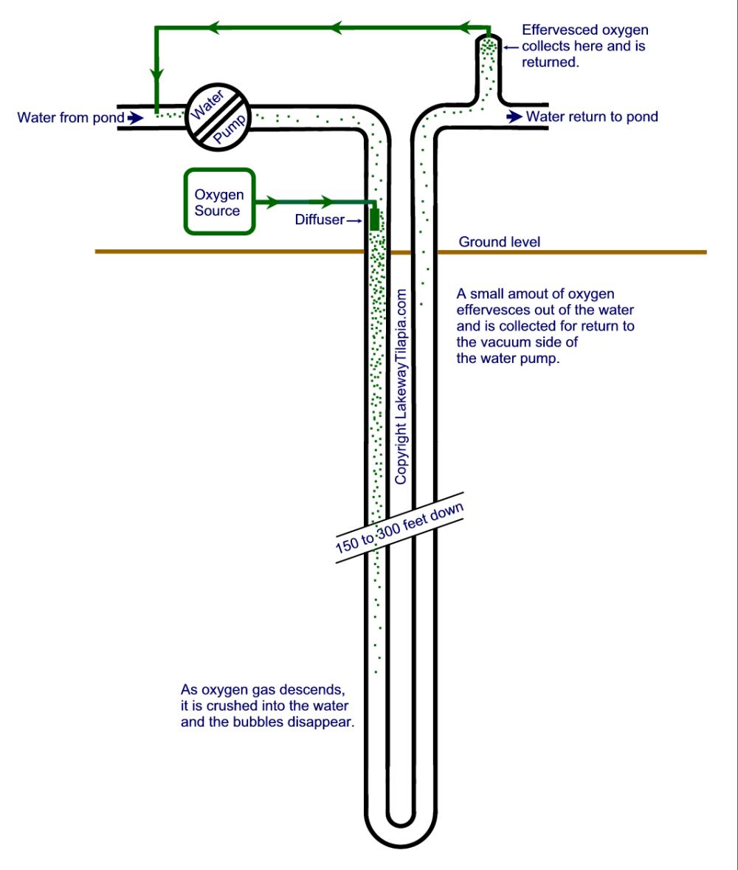 medium resolution of oxygen generation for tilapia farming