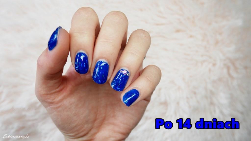 recenzja-VOGO-opinia-hybrydy-lakiery-hybrydowe-hybrid-nailpolishes-trwalosc-krycie-tanie-hybrydy-allegro-niebieskie-paznokcie-blue-nails-Lakierowniczka