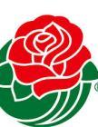 Rose Bowl Rose
