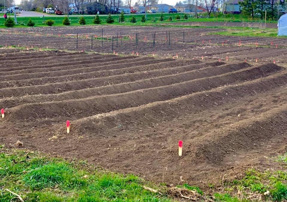 Daily Sack Meal Program Hits the Road & Spring Garden Prep Moves Forward