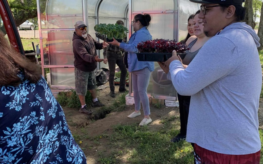Garden Planting Continues as CRYP Seeks to Improve Food Security