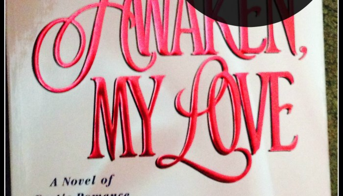 Book Review: Awaken My Love By Robin Schone