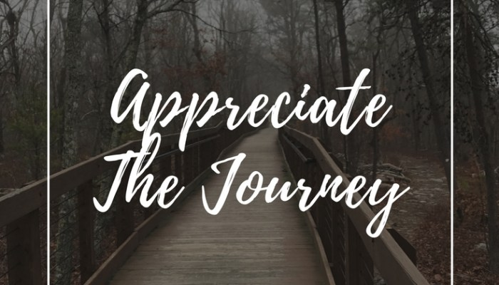 Appreciate The Journey