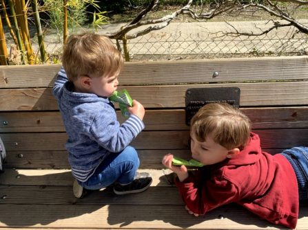 boys eating apple sauce on a bench