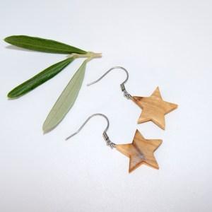 Boucles d'oreilles Etoile du Nord – Olivier