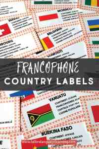 francophone-country-activities-and-webquest