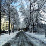 10 planes molones para disfrutar de la nieve en Múnich