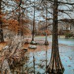 5 parques desconocidos para pasear en pandemia