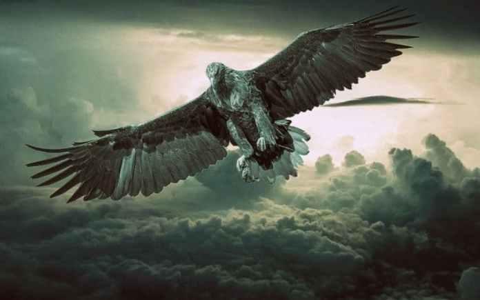 eagle-garud-bhagwan